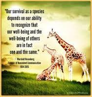 Il viaggio di mediazione tra pari nel mondo delle giraffe